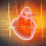 Omega-3 May Protect Against Coronary Calcification