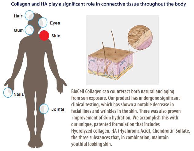 Biocell Skin