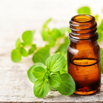 5 Things to Know About Oregano